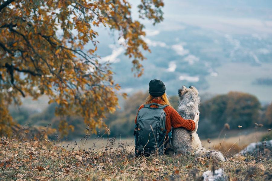 Hundehandwerk Team Boost-Coaching für Mensch mit Hund