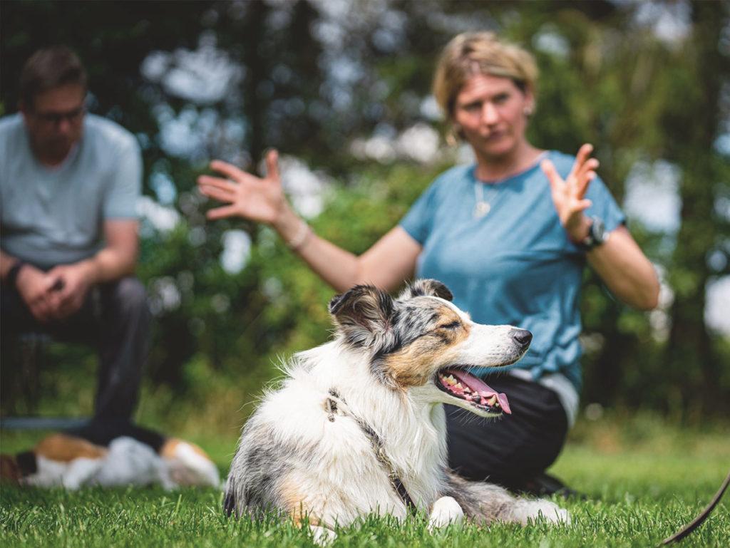 Tanjas Arbeit mit dem Hund